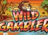 Игровые автоматы Wild Gambler играть бесплатно